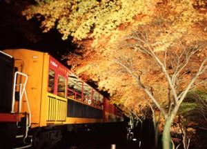 嵯峨野トロッコ列車 ライトアップ