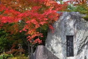 北野天満宮の御土居の紅葉