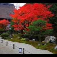 方丈庭園の紅葉と小方丈