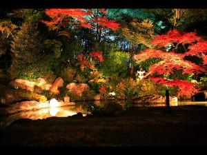 青蓮院門跡の相阿弥庭園